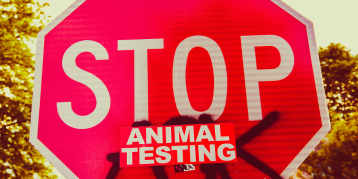 is animal testing for scientific purposes really necessary Argument essay – animal testing is necessary essay sample is it really necessary to take the lives of animals in the name of science and for the betterment of humanity.